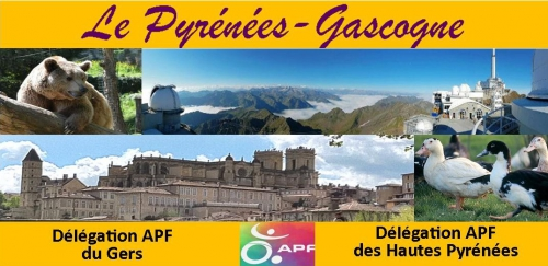 pyrenees gascogne 7.jpg