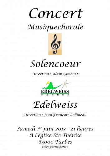 Affiche Solencoeur 1er juin 2013 tarbes.jpg